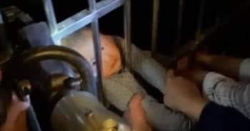 معجزة ... طفل يسقط من الطابق الـ13 وينجو