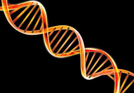 «جراحة كيميائيّة» لجينات بشريّة: حل مقترح للأمراض والتشوّهات الجينيّة